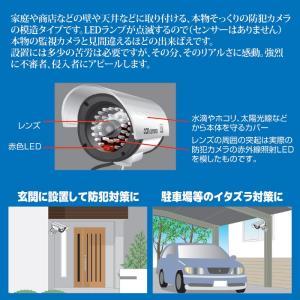 防犯LED点滅ダミーカメラ 防犯カメラ 家庭用 LED 監視カメラ 空き巣 不審者 侵入者|vieshop|02