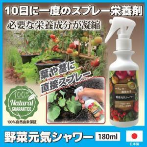 野菜元気シャワー 野菜 ガーデニング ガーデン 畑 園芸 菜園 肥料 有機 上田微生物 日本製|vieshop