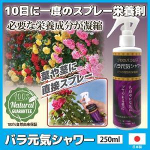 バラ元気シャワー バラ 薔薇 ガーデニング ガーデン 園芸 肥料 有機 上田微生物 日本製|vieshop