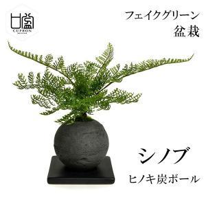 盆栽 シノブ シダ植物 檜 炭 ボール 黒皿 CUPBON フェイクグリーン 造花 ミニ サイズ P...