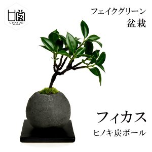 盆栽 フィカス 檜 炭 ボール 黒皿 CUPBON フェイクグリーン 造花 ミニ サイズ PRGR-...