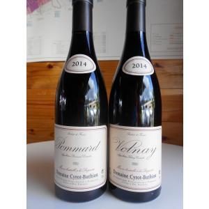 ワインセミナー通信3: ヴォルネイとポマール 村名比較 シロー=ブチヨー vinsfinsmotohama