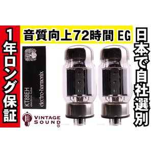 KT88 EH 2本マッチ 低パワー 真空管PX21