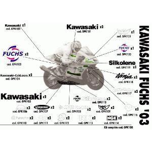 03 Fuchs カワサキ|vio0009