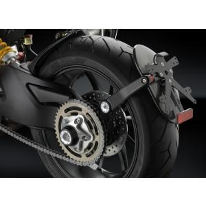 バイク フェンダーレス RIZOMA リゾマ サイド・アーム トライアンフ スピードトリプル 11-13 vio0009