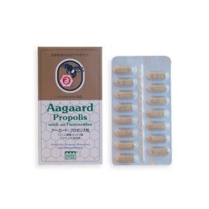 アーガードプロポリス (45粒)