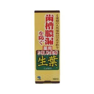 薬用歯みがき ひきしめ生葉 100g