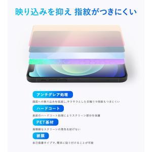 ポメラ DM200 用 液晶保護フィルム OverLay Plus for ポメラ DM200 /代引き不可/ 送料無料 保護 フィルム シート シール アンチグレア 低反射|visavis|03