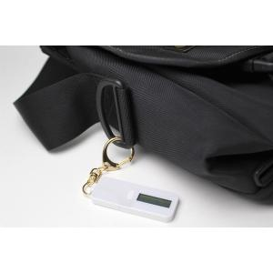 nocoly key holder ノコリーキーホルダー 電子マネー 残高 小さなキーホルダー型 visavis 03