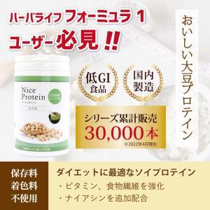 アイナチュラプレミアム ナイスプロテイン 抹茶 (500g入り)