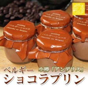 プリン ベルギーショコラプリン 6個セット ベルギー ショコラ チョコレート 小樽 アンデリス|vitaminshop-anzendo