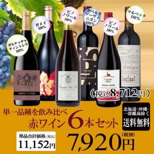 黒ブドウ単一品種のワインを味わおう! 赤バラエティ 5本セット