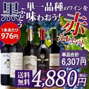 ワインセット 単一品種のワインを味わおう 赤ワイン 5本セッ...