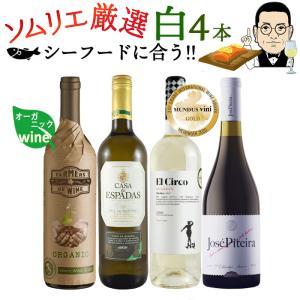 ワイン ワインセット ソムリエおすすめ お手頃チョイス 白ワ...