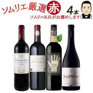 ワイン ワインセット ソムリエおすすめ お手頃チョイス 赤ワ...