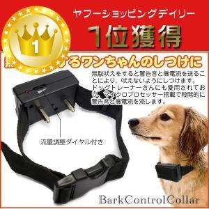 犬 しつけ 首輪 無駄吠えするワンちゃんのしつけに 無駄吠え防止首輪