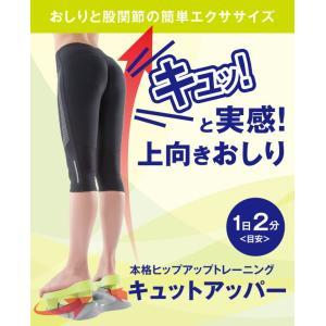 \国内正規品/ エクササイズグッズ 下半身 健康 体系 姿勢 股関節 トレーニング お尻 お腹 シェイプ 美容整体 脚 骨格補整  プロイデア キ vivian1616
