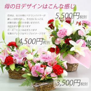 花 開店祝い 誕生日 プレゼント ギフト 生花...の詳細画像1