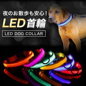 犬 首輪 光る LED おしゃれ かわいい 軽量 中型 大型 小型 充電不要