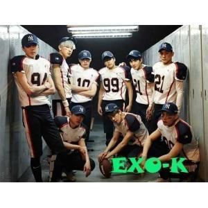 2集 リパッケージ - Love Me Right 韓国語バージョン(韓国盤)/EXOの画像