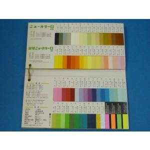 四ツ切 色画用紙一般色 単色10枚セット売り (4NCR) リンテック ニューカラーR  (392mm×542mm)