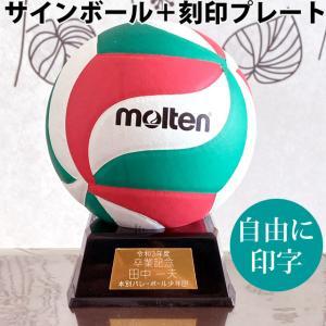 【名入れ】モルテン(molten) カラーサインボール+プレート [V1M500-KOKUIN] 寄...