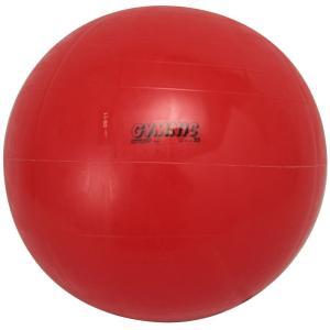 ダンノ(DANNO) ギムニクカラーボール 55cm D54...