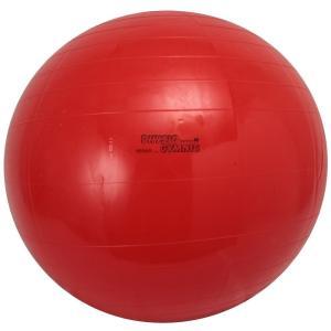 ダンノ(DANNO) ギムニクカラーボール 85cm D54...