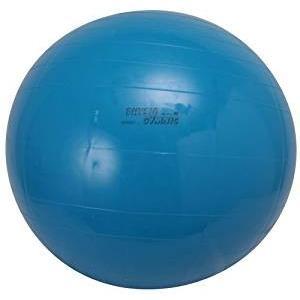 ダンノ(DANNO) ギムニクカラーボール 95cm D54...