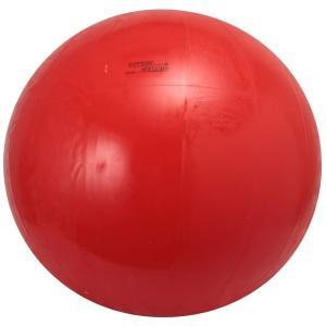 ダンノ(DANNO) ギムニクカラーボール 120cm D5...