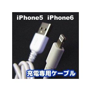 iPhone/iPad - USBケーブル 50cm|vshopu