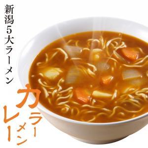 新潟五大ラーメン カレーラーメン1食箱入れ スープ・乾燥野菜付 お土産 食べ比べ ご当地ラーメン 電子レンジ調理 レンジでできる 火を使わない|vt-web