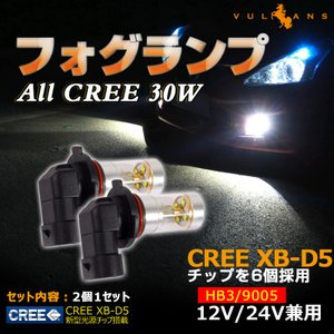 エルグランドE51ハイビーム ALL CREE 30W LED ホワイト 2個セット HB3|vulcans