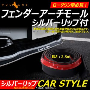 MIXSUPER フロントリップスポイラー シルバーリップ付 バンパープロテクター 2.5m 1本 ...