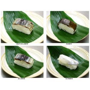 選べるお寿司(8貫)|w-sui-y-s|02