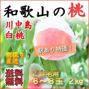 和歌山田中農園の桃 川中島白桃 訳あり2kg 6玉〜8玉...