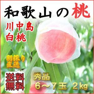 和歌山田中農園の桃 川中島白桃 秀品2kg 6玉〜7玉...