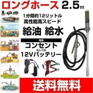 灯油ポンプ 電動 軽油や水でもOK ロングホースで多目的に使える小型・軽量ポンプ 差込み型 給油 DEP150412V w-yutori
