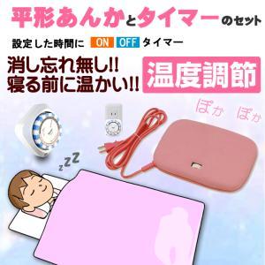 電気あんか 温度調節可能 タイマーセット 平型 平形 w-yutori