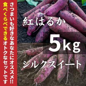 紅はるか & シルクスイート 5kg (土付き) さつまいもセット (北海道・沖縄・離島はお届け不可)|wa-zeka