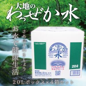 大地のわっぜか水 20L BIB×4箱 wa-zeka