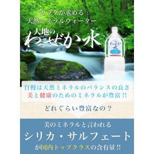 大地のわっぜか水 20L BIB×4箱 wa-zeka 02
