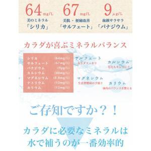 大地のわっぜか水 20L BIB×4箱 wa-zeka 03