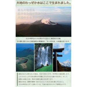 大地のわっぜか水 20L BIB×4箱 wa-zeka 06