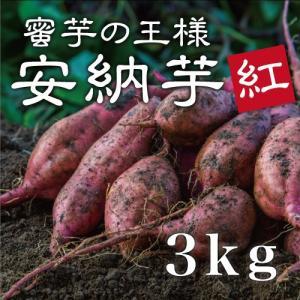 【2017年予約開始!】早割価格!安納芋 紅 3kg(生芋・...