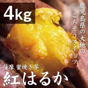 薩摩 蜜焼き芋 4.8kg(1.2kg×4袋)(4種類のお芋...