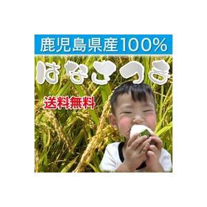 (29年産)鹿児島県産はなさつま 20kg(10kg×2袋)  (送料無料 玄米・白米選べます)|wa-zeka