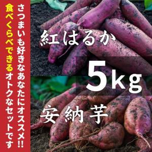 紅はるか&安納芋 紅 5kg蜜芋セット(土付き)【紅...