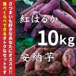 紅はるか&安納芋 紅 10kg蜜芋セット(土付き)【...