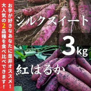 【予約】紅はるか&シルクスイート 3kg 天然スイーツセット(土付き)【べにはるか さつまいも 紅はるか シルクスイート サツマイモ】|wa-zeka